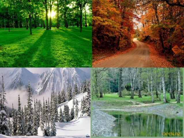 Which is the most beautiful season in your country?